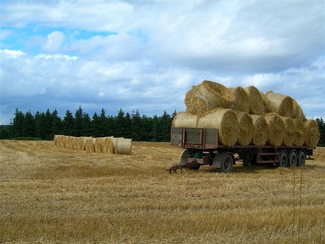 Straw Bales at Redstone