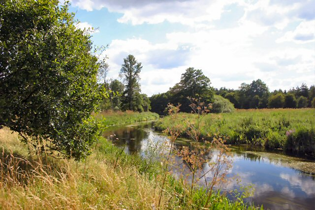 River Little Ouse near Thetford Power Station