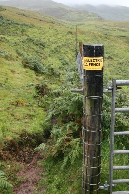 Electric Fence West of Ballygroggan.