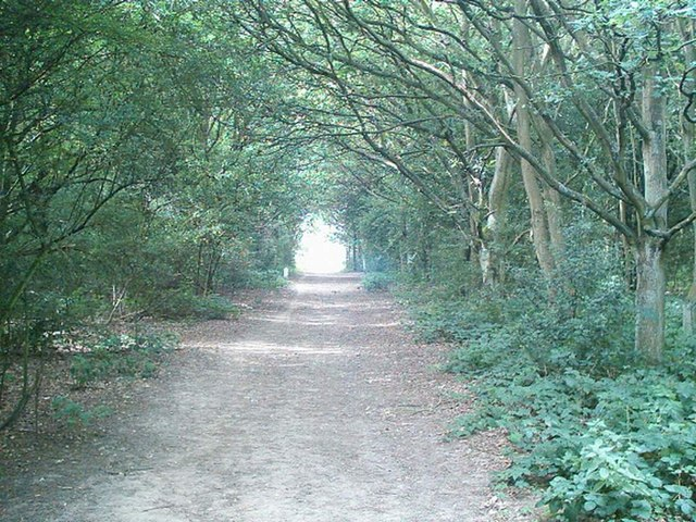 Footpath from Walkers Road to East Common,Harpenden