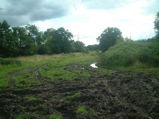Footpath south-west across Gallaghers Fields