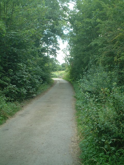 Road to Gallaghers Fields