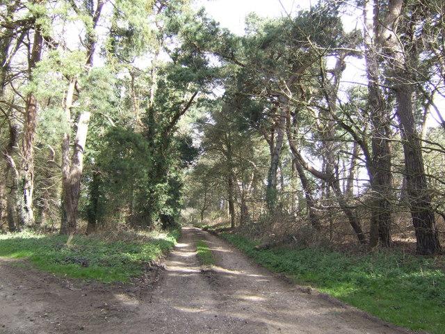 Bridleway to  Drymere