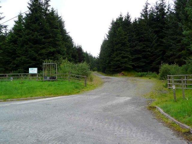 Entrance to the Davington Forest