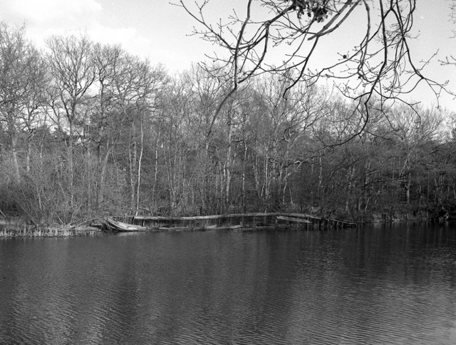 Remains of old boat near Mytchett Lake, Basingstoke Canal