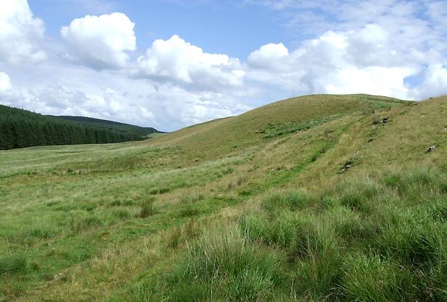 Track  across Esgair Wynt, Ceredigion