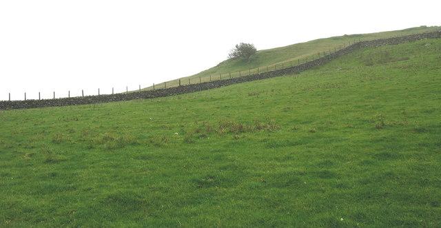 Farm boundary wall between Hendre-bryn-crogwydd and Nant Budr