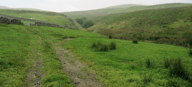 Track to the moorland grazings along the Nant Budr valley
