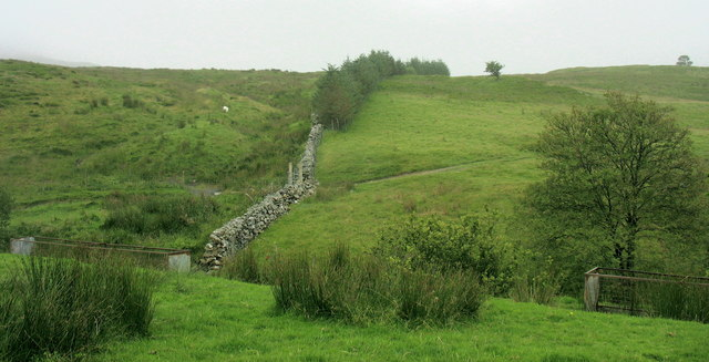 Wall between in-by fields and ffridd above Nant Budr