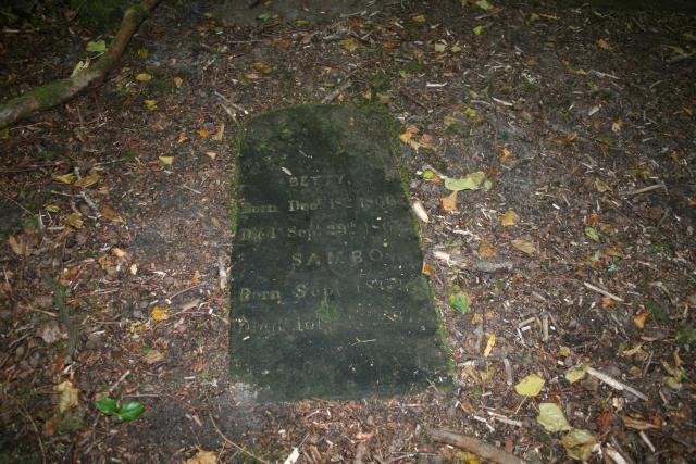 Carradale Estate Dog Graveyard (2).