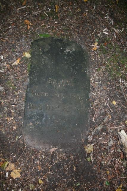 Carradale Estate Dog Graveyard (3).