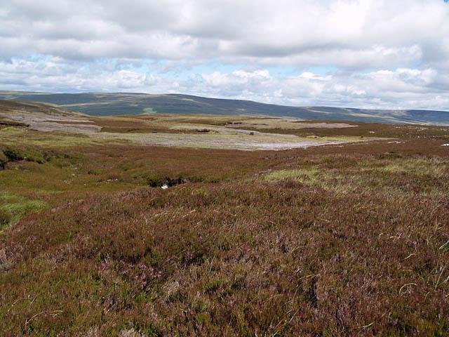 Moorland, Cronkley Fell