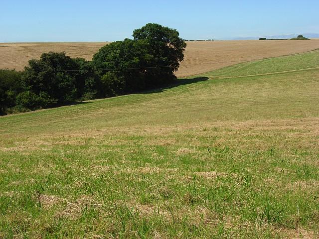 Farmland, Winterslow