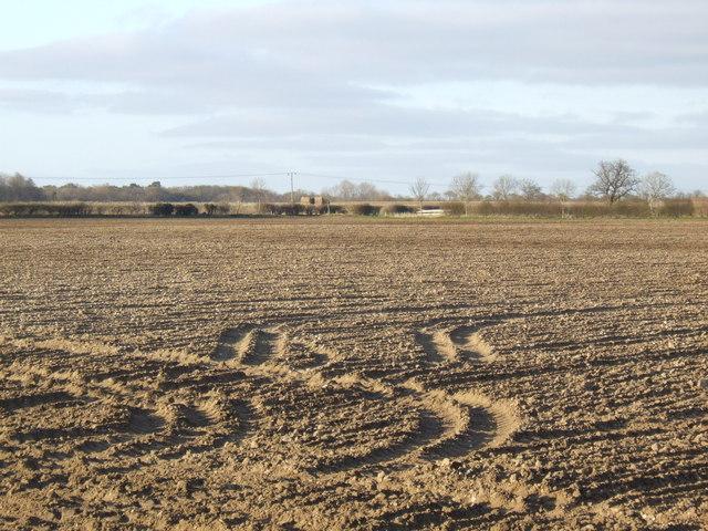 Tyre tracks in the soil