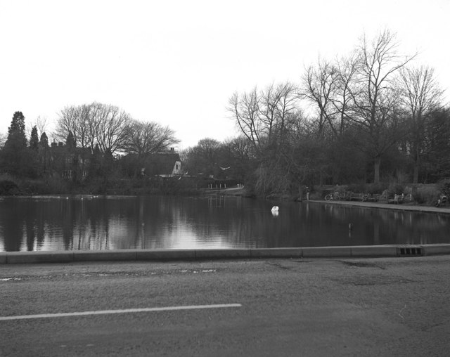 Mere Pond, Walton-on-the-Hill, Surrey (1)