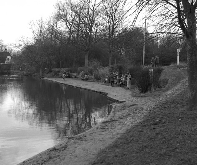 Mere Pond, Walton-on-the-Hill, Surrey (2)