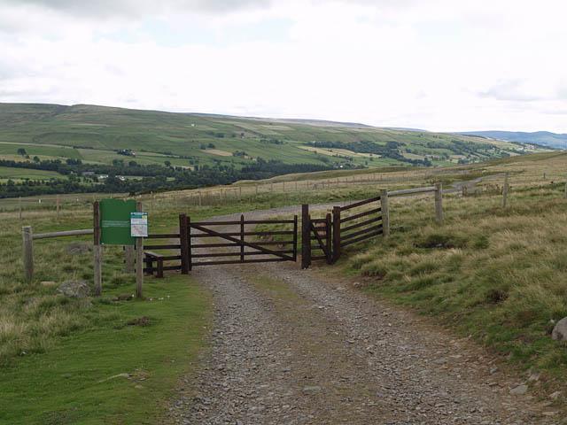 Bridleway to Holwick