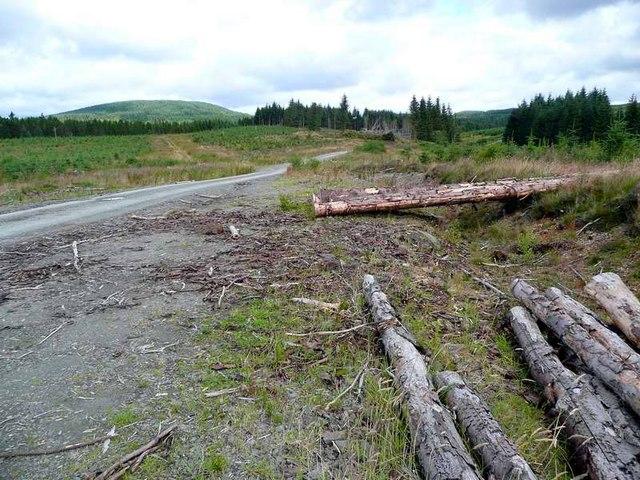 Forgotten logs