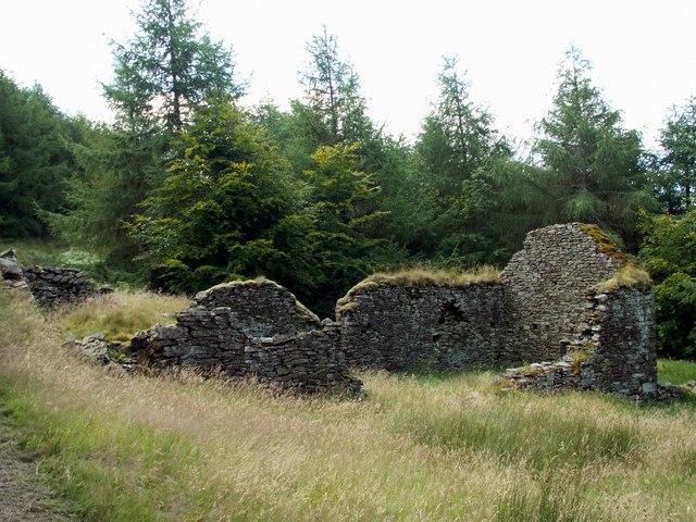 Ruins of Blaen Fflur Farm House