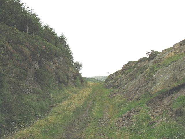 Cutting on the disused GWR built Bala-Ffestiniog railway