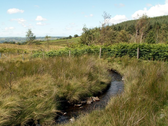 The Afon Fflur