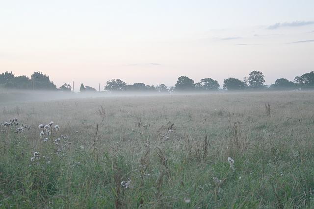 Misty Meadow, Lower Hook