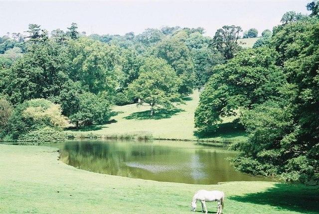 Minterne Gardens: top end