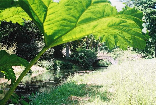 Minterne Gardens: alongside the Cerne
