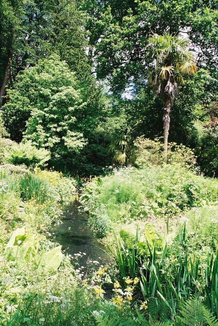 Minterne Gardens: bottom end