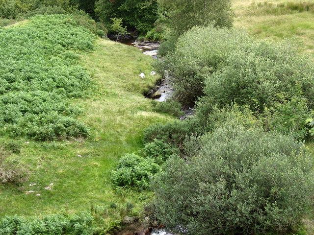 Afon Llafar from the Llafar railway bridge