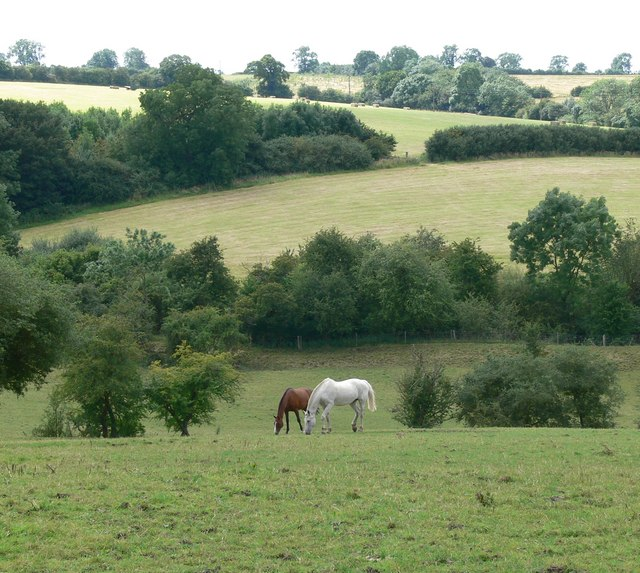 Countryside near Ingarsby Old Hall