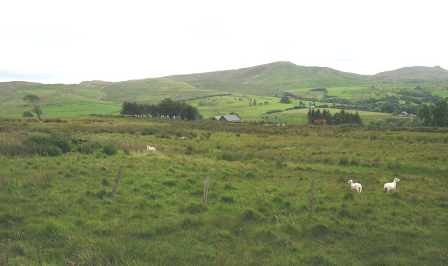 View across rough pasture towards a pair of barns