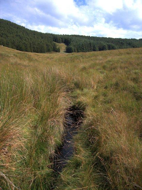 Upper Afon Fflur