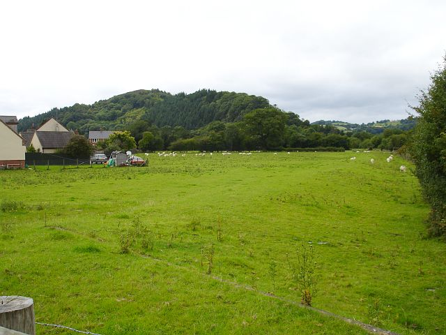Pasture on the edge of Meifod