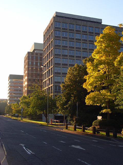 Basing View, Basingstoke