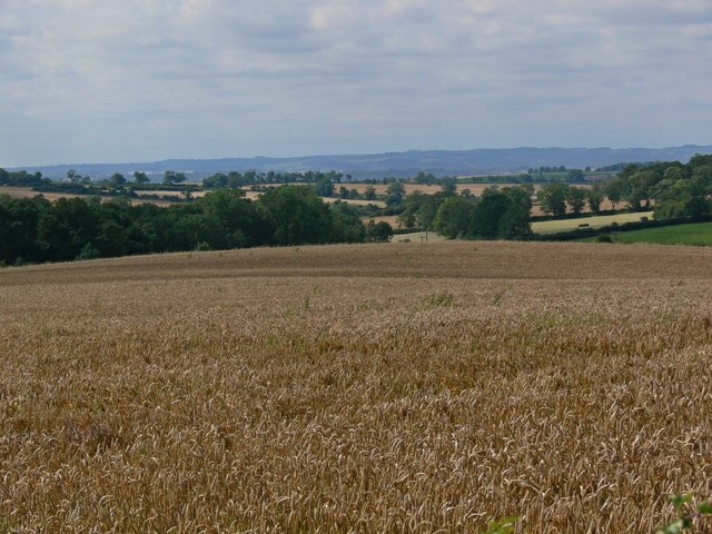 A view across Leicestershire countryside