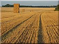SU1438 : Harvested farmland, Great Durnford by Andrew Smith