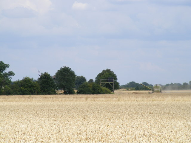 Wheatfield and Outbuildings at Rosehill Farm