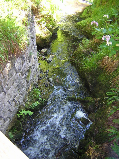 Bodnant Water course