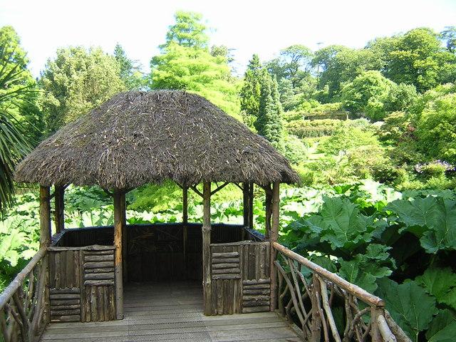 Bog Garden at Penrhyn Castle