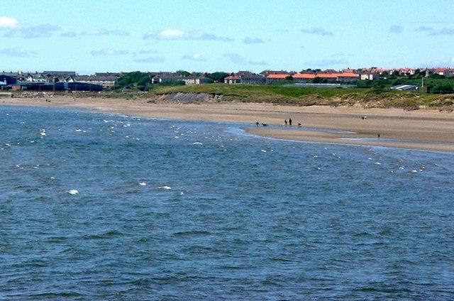 Stevenston beach LNR