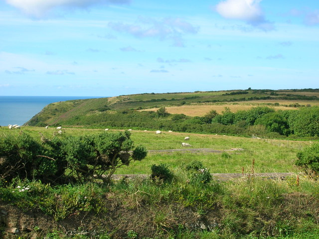 View of Morfa Common