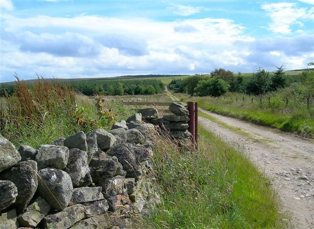 Cluny Farm Track