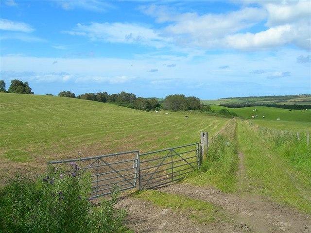 Old Farm Track