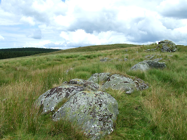 Esgair Cerrig, north of Cwm Doethie Fawr, Ceredigion