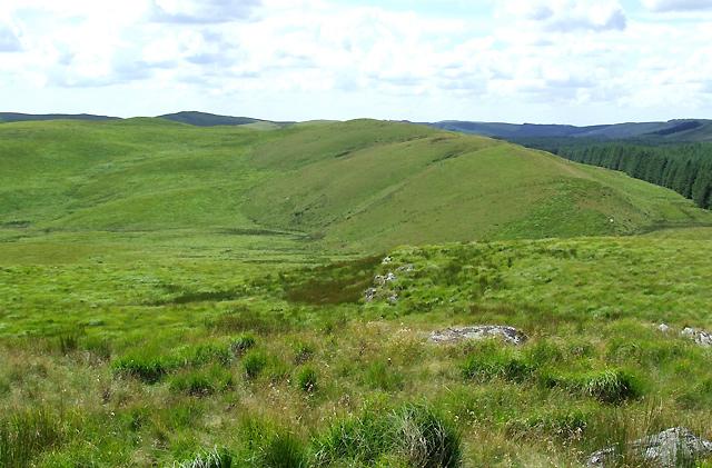Towards Esgair Wynt, Ceredigion