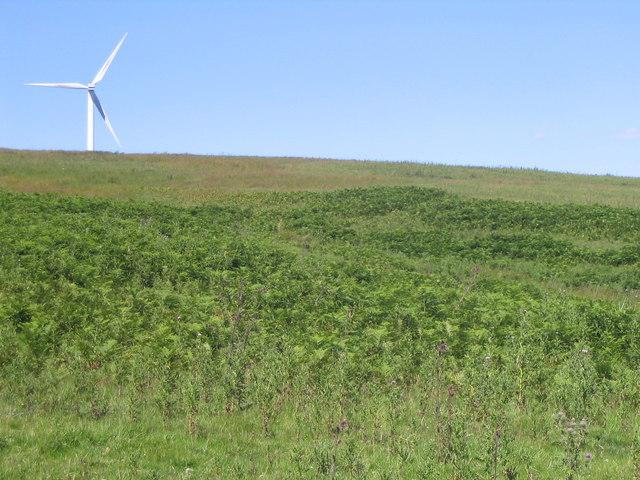 A Border Windmill