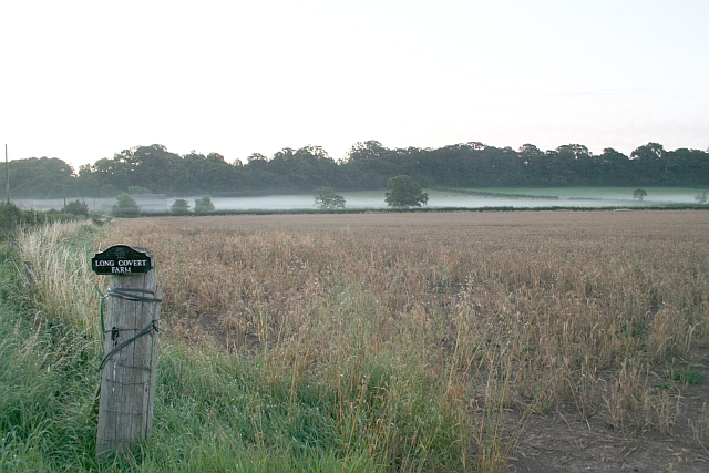 Pre-Dawn Mist, Long Covert Farm