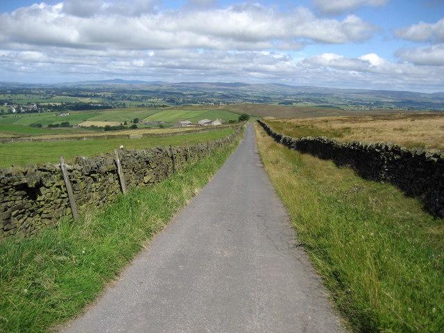 Dodgson Lane
