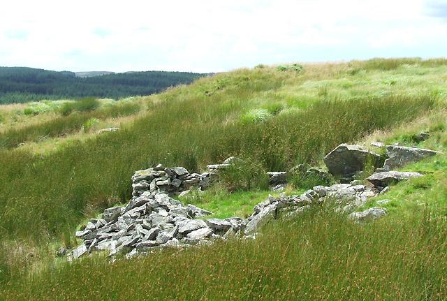 Ruined Shelter on Esgair Cerrig, north of Cwm Doethie, Ceredigion